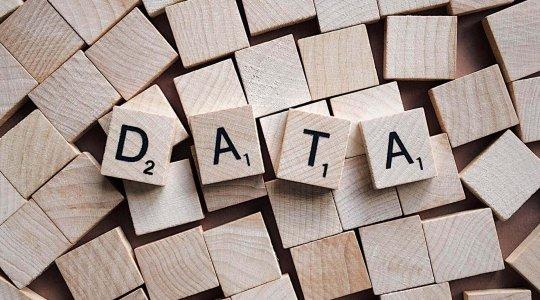 WordPress Course - Data