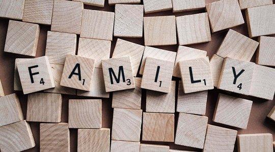 WordPress Course - Family