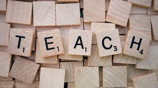 WordPress Course - Teach